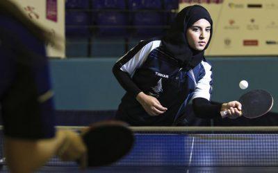 Arabian Artworks For Ping Pong Paddles